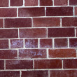 Brick wall — Stock Photo #10489252