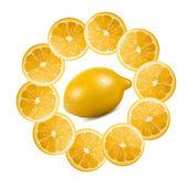 Gesneden citroenen — Stockvector