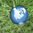 World globe on grass — Stock Photo #9305612