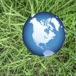 Stock Photo: World globe on grass