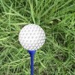 Golf ball on peg — Stock Photo