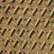 Manhole cover — Stock Photo #9402280