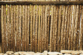Raw wood fence — Stock Photo