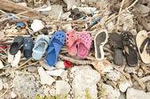 Sea shoes — Stock Photo