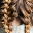 Stock Photo: Two braids