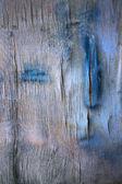 Humid plywood — Stock Photo