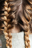 Two braids — Stock Photo
