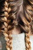 Two braids — Stock Photo
