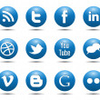 Blue Social Media Icons — Vector de stock #10102105