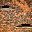 Stock Photo: ROOF WITH EYES