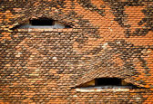 ROOF WITH EYES — Stock Photo