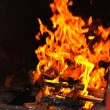 Fire grilled — Stock Photo
