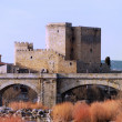Castle and bridge — Foto Stock