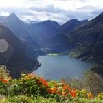 Geirangerfjord — Stock Photo #8578361