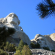 Mount Rushmore — Stock Photo #8579121