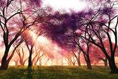 Cherry Blossoms Japanese Garden 3D render — Stock Photo