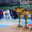 Youth Judo competition. - Stock Photo