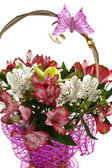 Flowers alstroemeria — Photo