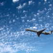 Big airliner — Stock Photo #8600335