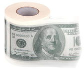 Toilet paper. — Stock Photo
