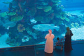 Aquarium in Dubai — Stock Photo