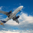 Big airliner — Stock Photo #9812690