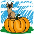 Cat on a pumpkin — Stock Vector