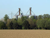 Grain storehouse — ストック写真