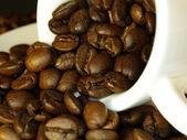 Chicchi di caffè in una tazza — Foto Stock