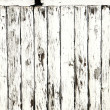 Picket fence — Stock Photo #8698239