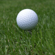 Golf ball on a tee — Stock Photo
