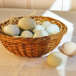 Pastel colored chicken eggs in an Easter basket. — Stock Photo