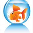 Fish is an aquarium - Stock Vector