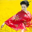Stock Photo: Geishin yellow field
