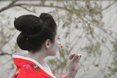 Geisha with the little red flower — Stock Photo