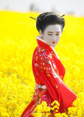 Geisha in the yellow field — Stock Photo