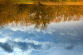 Reflection in the river of thunderclouds and trees — Stock Photo