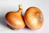 Two bulb onion — Stock Photo
