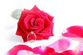 Wedding Ring in Rose — Stock Photo