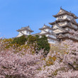 Japanese castle and Beautiful flower — Stock Photo #8574137