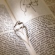 Wedding diamond rings on a bible — Stockfoto