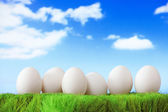 White eggs on green grass with blue sky — Stock Photo