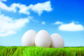 Three white eggs on grass in front of a cloudy sky — Stock Photo