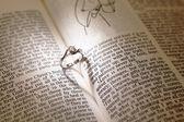 Anillos de diamantes sobre una biblia de boda — Foto de Stock