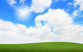 Green grass with blue sky and sunshine — Stock Photo