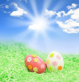 Easter eggs on grass with blue sky — Stock Photo