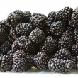 Ripe blackberry — Stockfoto