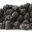 Stock Photo: Ripe blackberry