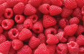 Sweet raspberry — Stock Photo