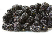 Ripe blackberry — Stock Photo